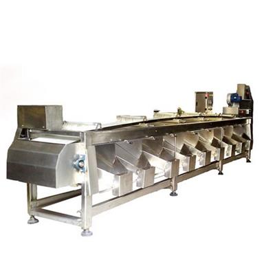 Olive sorting machine